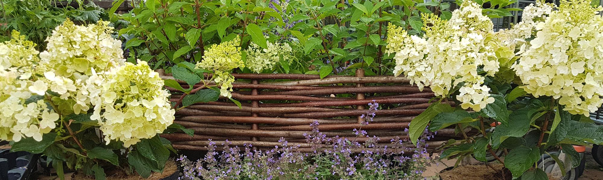 Kramer garten ambiente staketenzaun der naturzaun von kramer garten ambiente - Garten beeteinfassung ...
